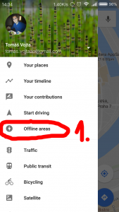 In settings click to Offline areas